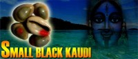 Black small kaudi